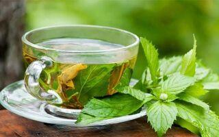 Как при беременности принимать почечный чай и фиточаи от отеков, польза и возможный вред