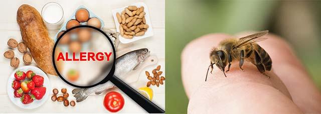 Аллергены и укус пчелы