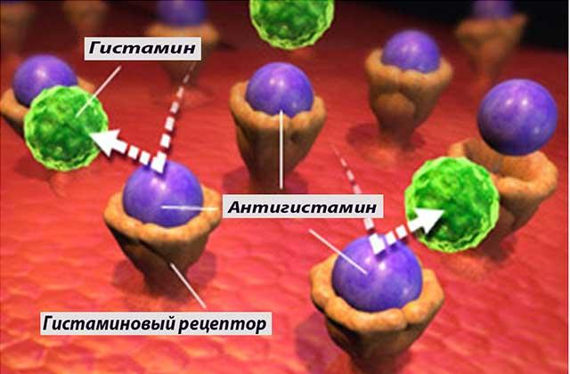 гисГистамины и простагландины