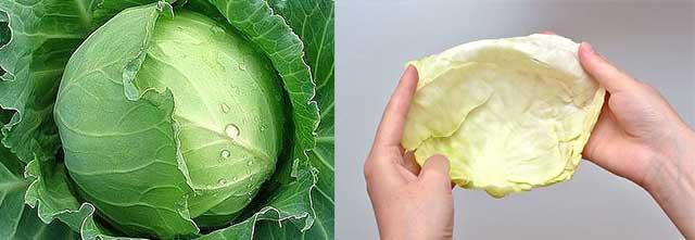 Компресс из листьев капусты