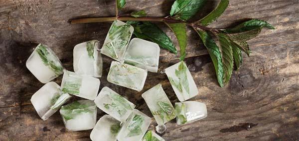 Кубики льда с шалфеем