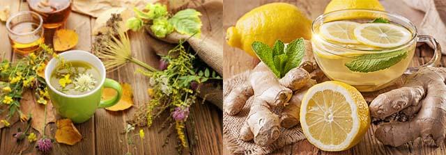Целебные травы лимон и имбирь