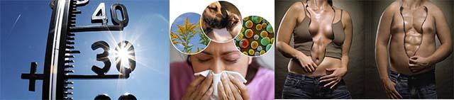 Высокая температура, аллергия и полнота