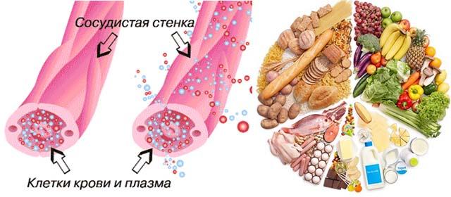 Проницаемость сосудистых стенок и белковая еда