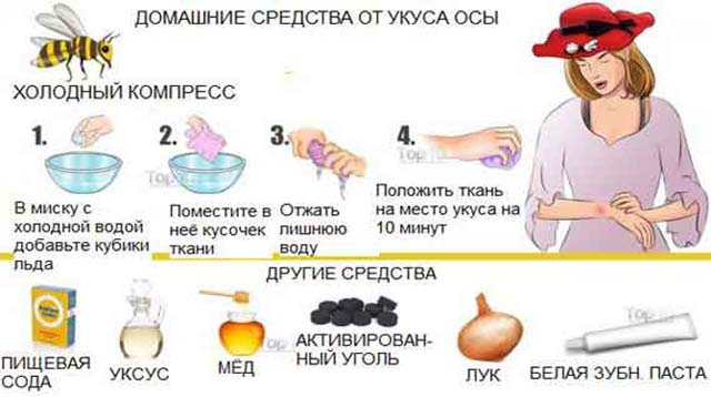 Народные средства от укуса осы