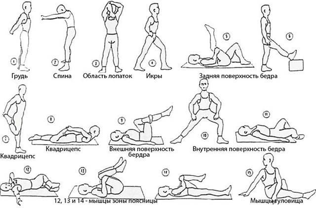 Зарядка для всего тела