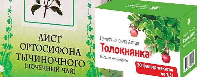 Лист ортосифона и Толокнянка