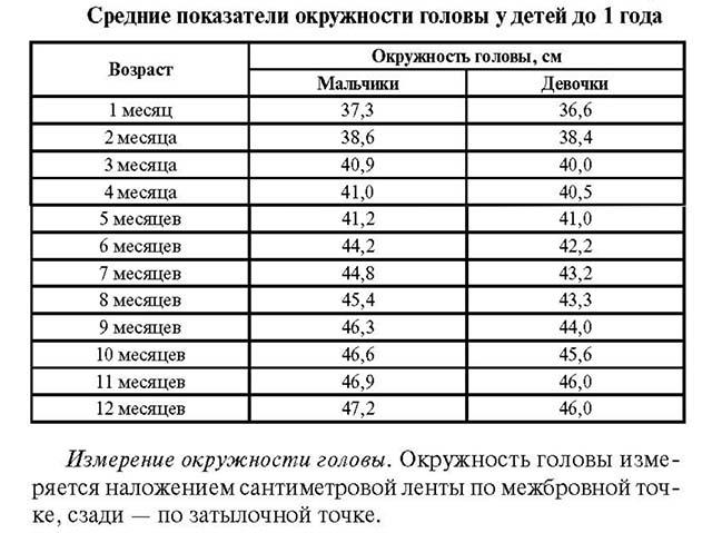 Таблица показателей окружности головы