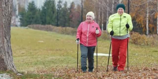 Скандинавская ходьба пожилых людей