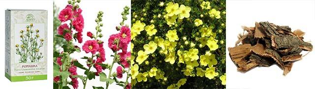 Ромашка аптечная, цветы мальвы, лапчатка, кора дуба