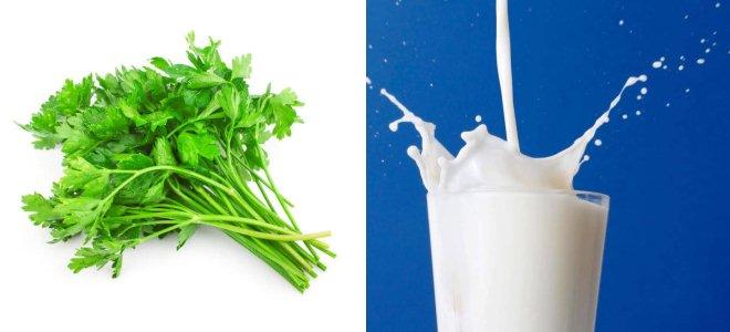 Петрушка и молоко